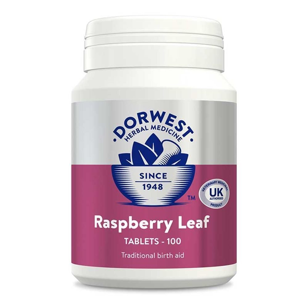 Dorwest Raspberry Leaf Tablets