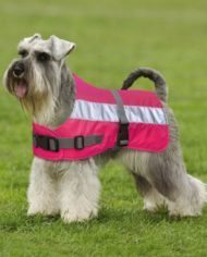 Petlife Flecta High Vis Dog Coat-1
