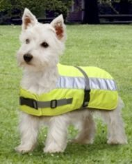 Petlife Flecta High Vis Dog Coat-5