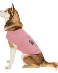American Kennel Club Calming Coat