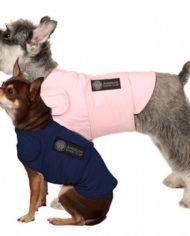 American Kennel Club Calming Coat-4