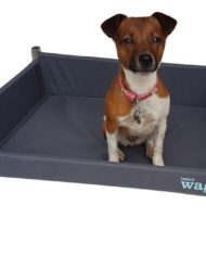Henry-Wag-Elevated-Bed-1