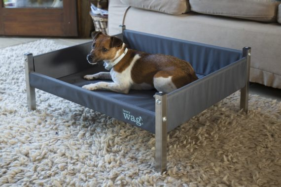 Henry-Wag-Elevated-Bed