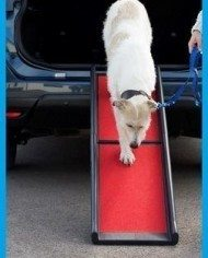 Henry Wag Lightweight Folding Dog Ramp 1