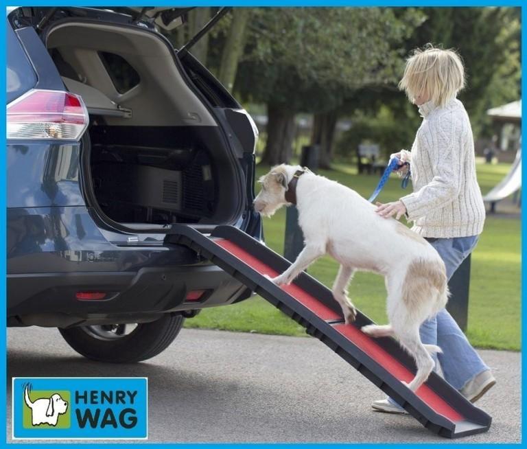 Henry Wag Lightweight Folding Dog Ramp