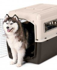 PetMate Vari Ultra Fashion Dog Pet Kennel Crate 1