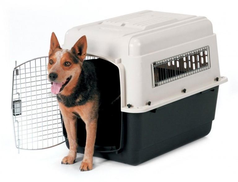PetMate Vari Ultra Fashion Dog Pet Kennel Crate